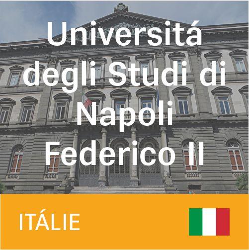 Universitá degli Studi di Napoli Federico II