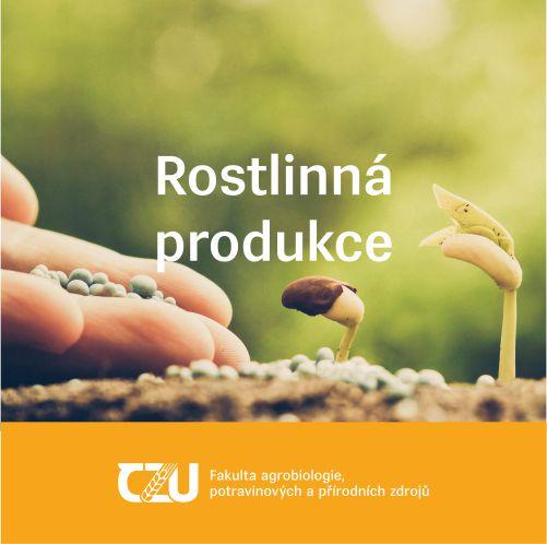 Rostlinná produkce